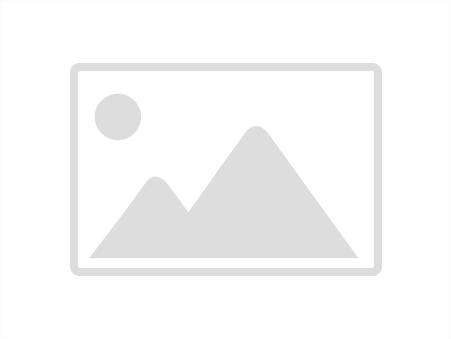 vente terrain LARUNS 3620m2 0€